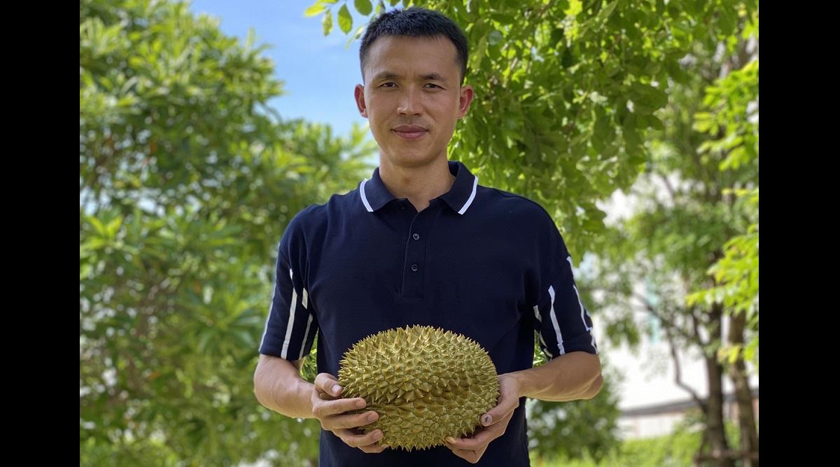 NutryFarm diversifies into durian distribution - THE EDGE SINGAPORE
