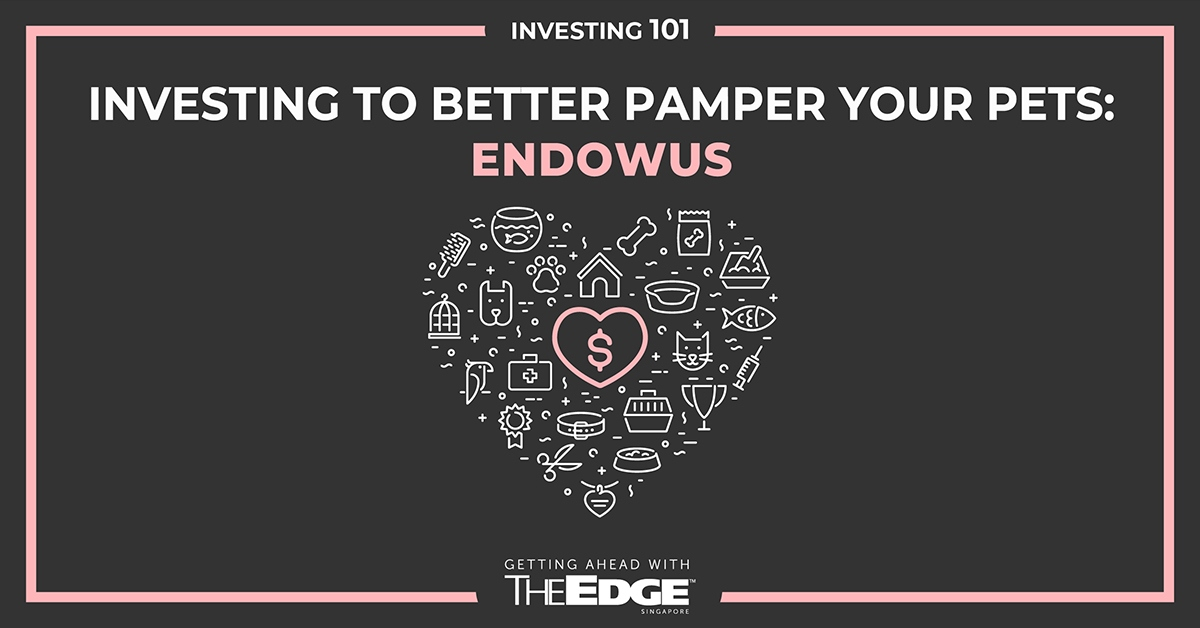 Investing to better pamper your pets: Endowus - THE EDGE SINGAPORE