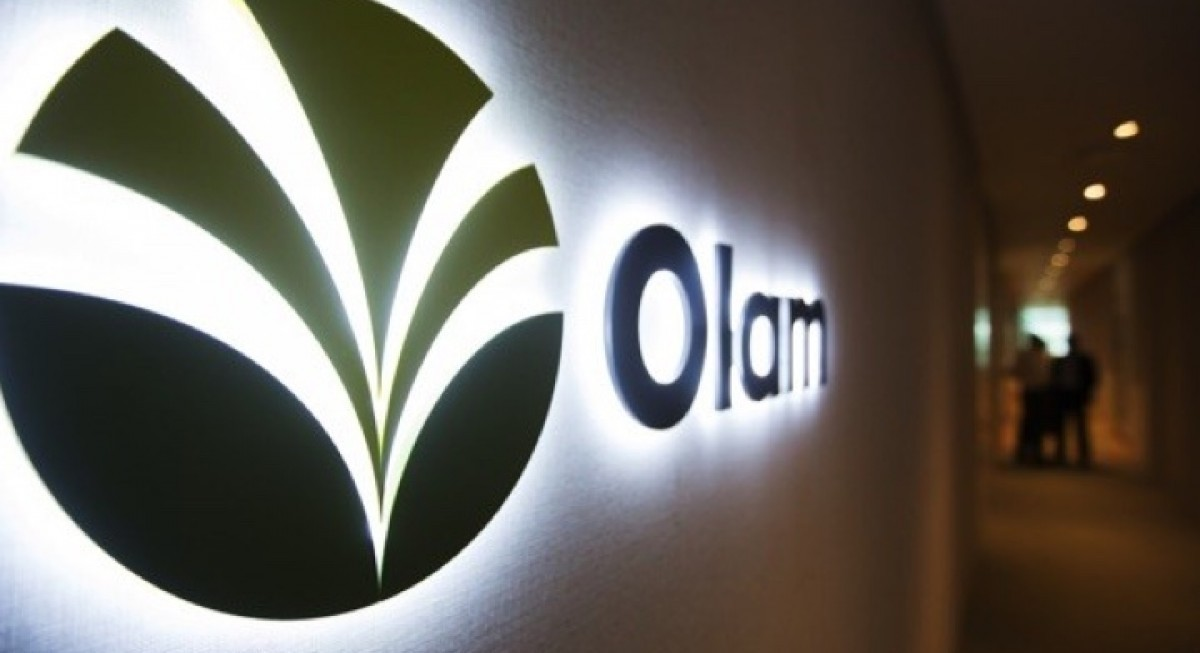 Olam reports 13.1% lower earnings for 1Q21, announces $601.7 million rights issue - THE EDGE SINGAPORE
