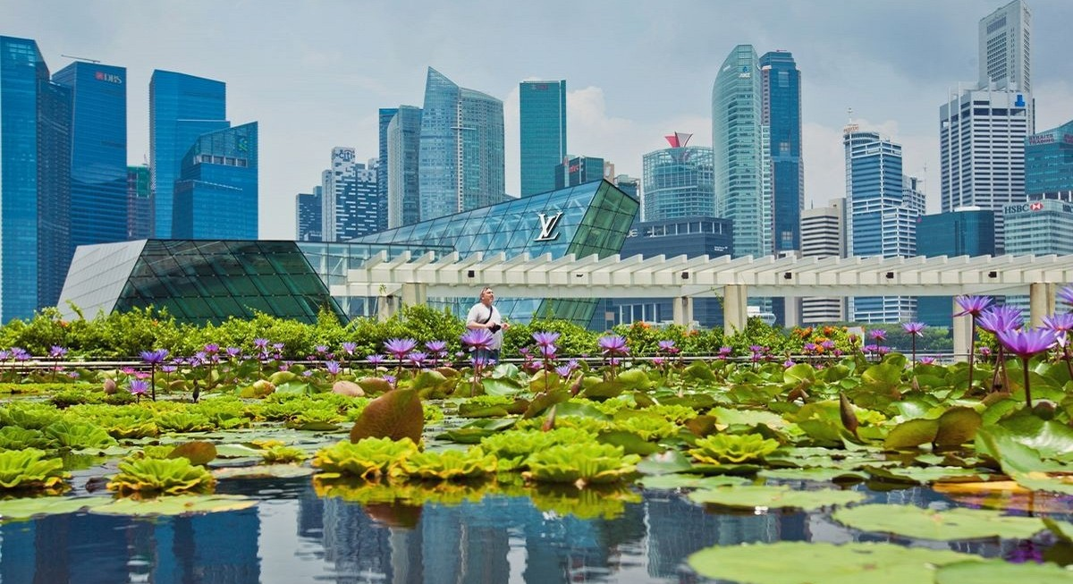 Singapore growing 'green node' for Asia's sustainability efforts: DPM Heng - THE EDGE SINGAPORE