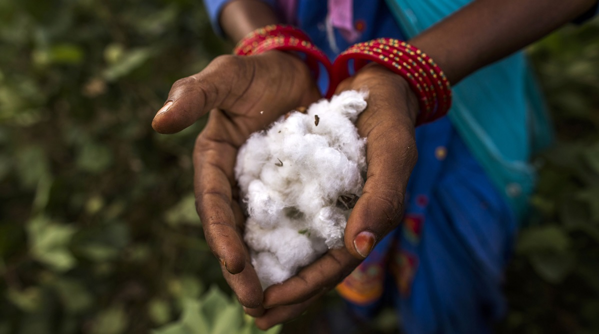 DBS partners apparel maker Inditex to support India's organic cotton industry