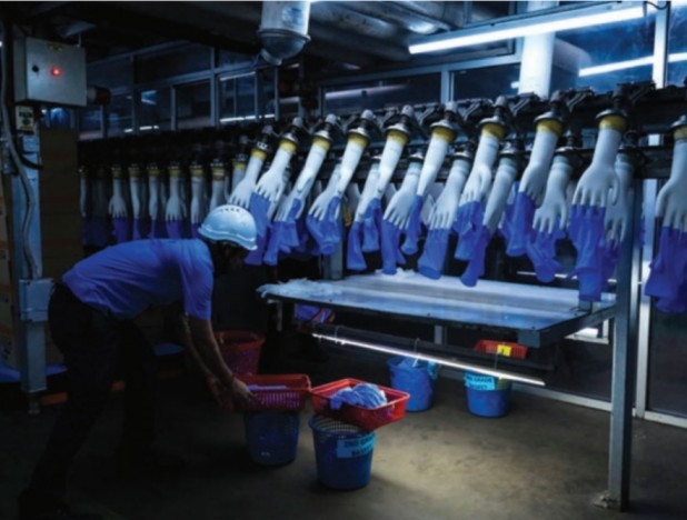 Healthcare equipment and glove makers enjoy a stellar year, drawing in new competitors - THE EDGE SINGAPORE
