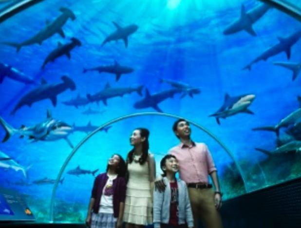 Haw Par Corporation declines to comment on Underwater World Singapore's litigation - THE EDGE SINGAPORE