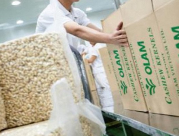 Olam International acquires 51% stake in Togo's state-owned cotton company for $24.4 mil - THE EDGE SINGAPORE
