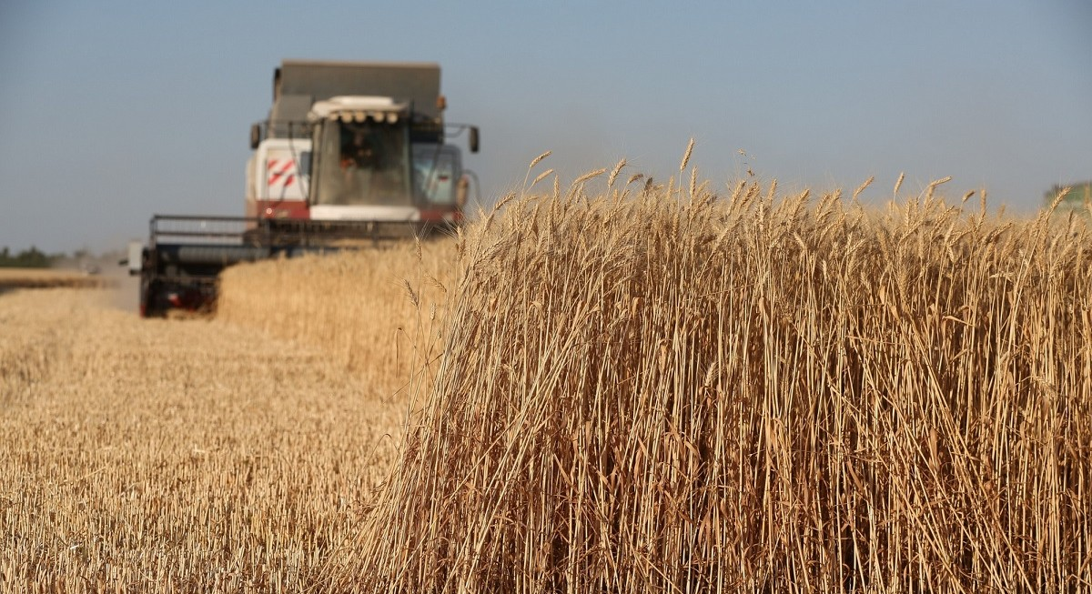 Don Agro in Russia's Rostov region feeds rising global demand for wheat, seeds, corn - THE EDGE SINGAPORE