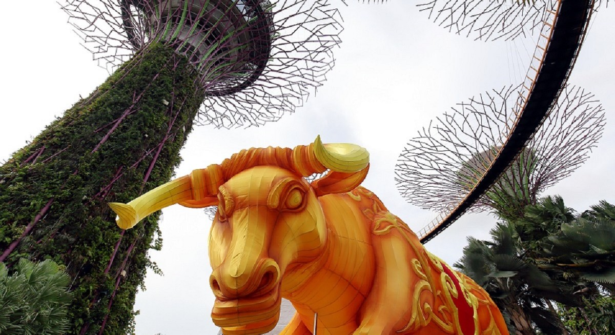 Bull charge in the Year of the Ox? - THE EDGE SINGAPORE