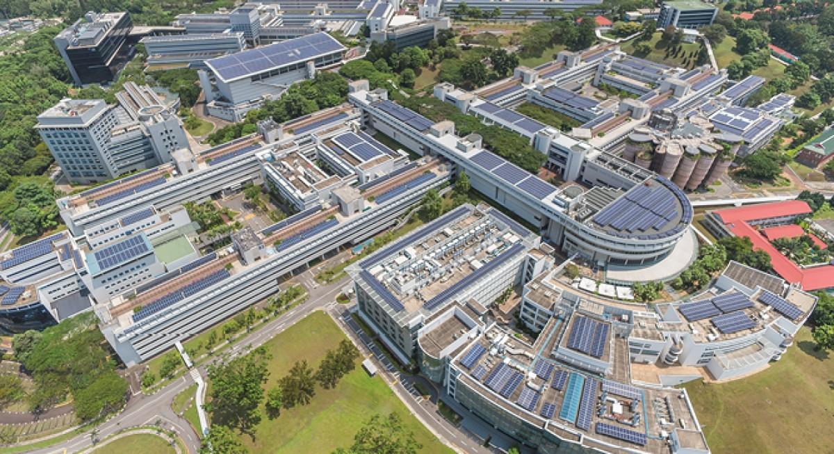 NTU unveils sustainability manifesto with $1 bil multicurrency bond facility - THE EDGE SINGAPORE