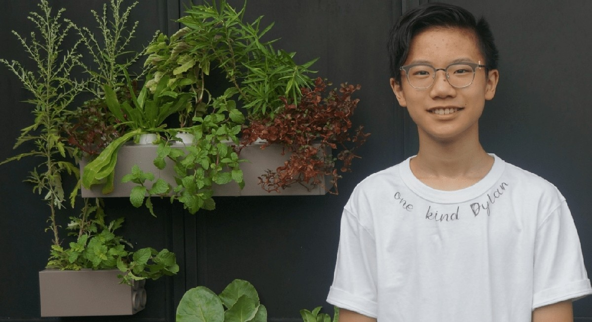 Singapore Design Awards: 19-year-old urban farmer Dylan Soh sets a high bar for being the youngest winner - THE EDGE SINGAPORE