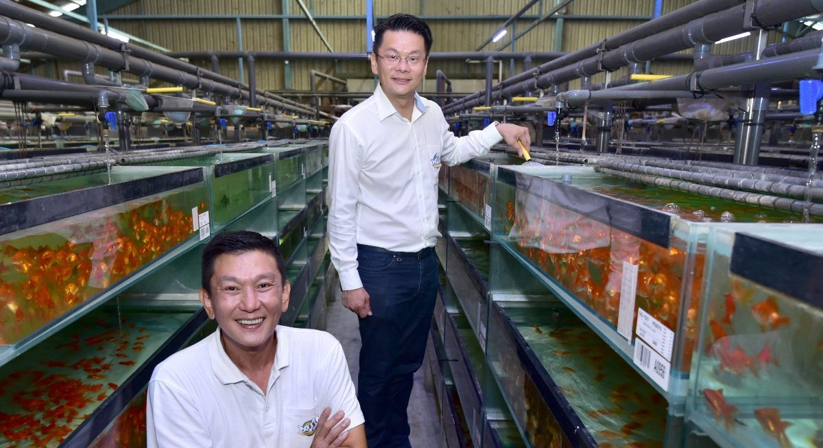 Qian Hu's new leader looks to change stereotype of a fish company - THE EDGE SINGAPORE