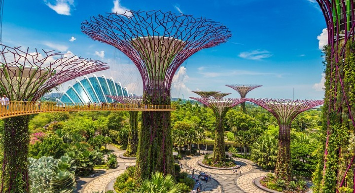 Will 2021 bring recovery to Singapore's equity markets? - THE EDGE SINGAPORE