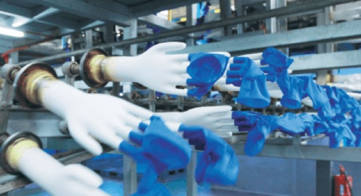 Top Glove's share price falls on factory closure news; buys back more shares - THE EDGE SINGAPORE