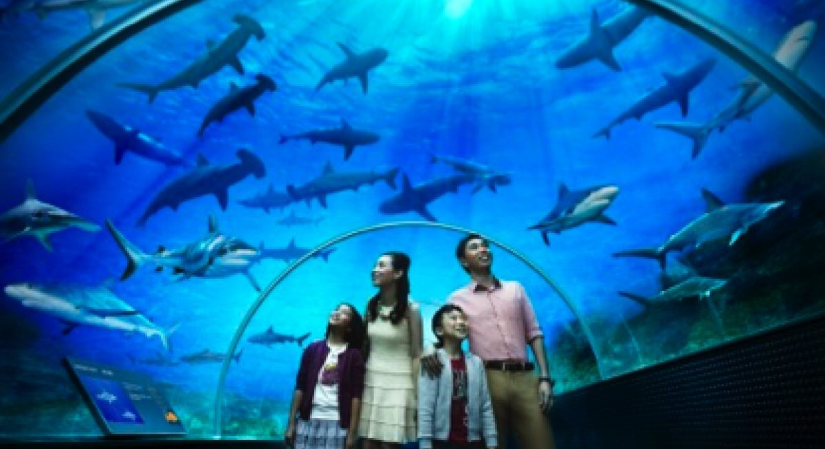 Haw Par Corporation declines to comment on Underwater World Singapore's litigation - THE EDGE SINGAPORE